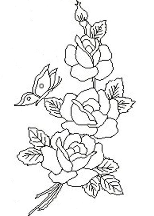 три розы 06.05.2014 Verginija